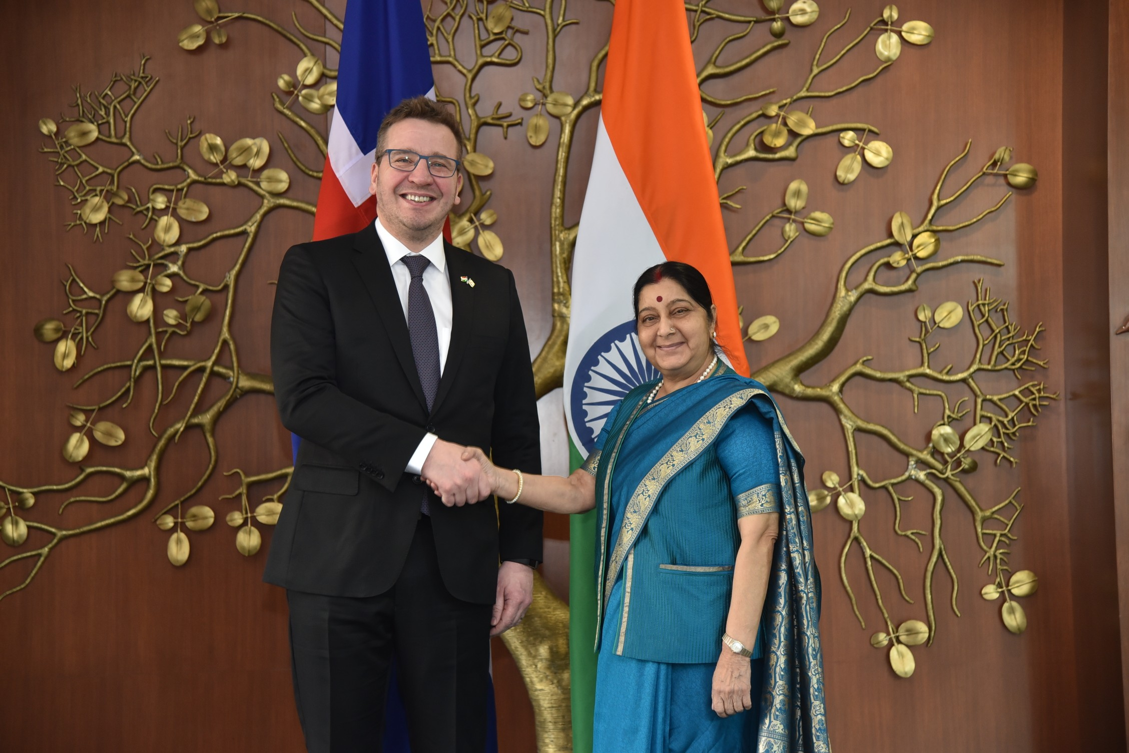 Foreign Ministers of Iceland and India - mynd