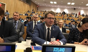 News image for Iceland elected to the Human Rights Council