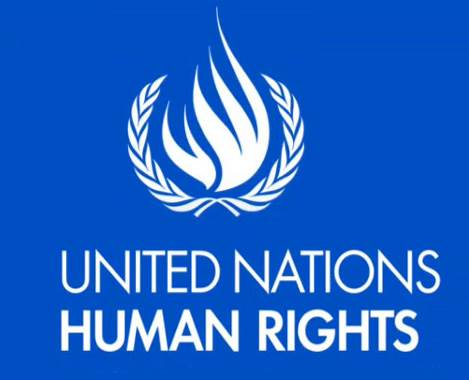 Statement of Iceland on the Human Rights situation in Palestine - mynd
