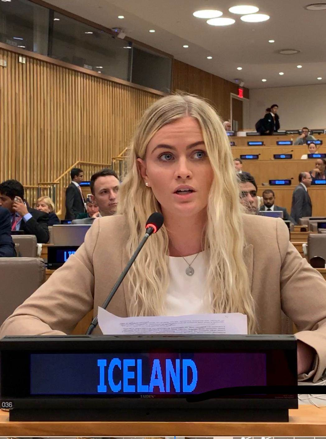 Statement by Esther Hallsdóttir, Iceland´s Youth Delegate to the United Nations - mynd