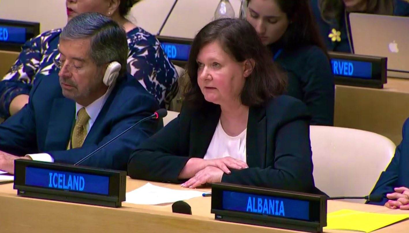 Statement by Ambassador Bergdis Ellertsdottir at the Pleding Conference on Women, Peace and Security  - mynd