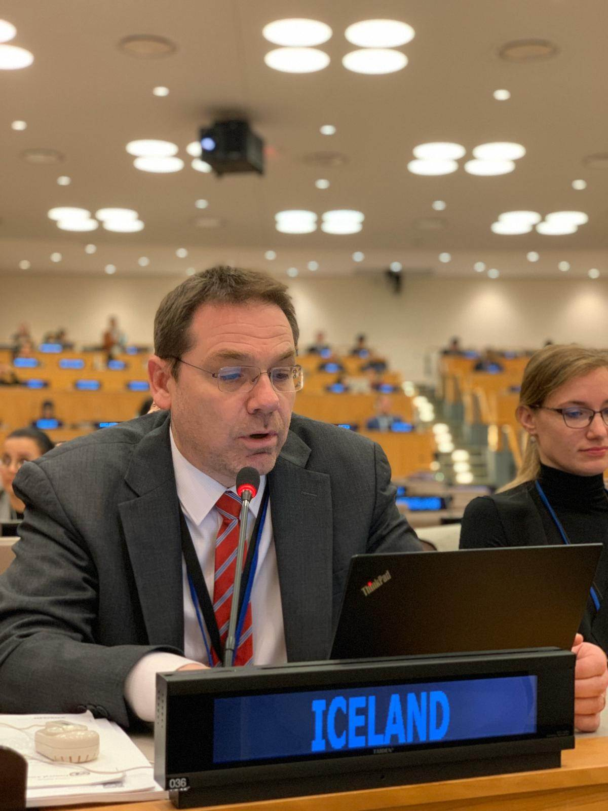 Statement by Davíð Logi Sigurðsson, Director for Human Rights to the Third Committee - mynd
