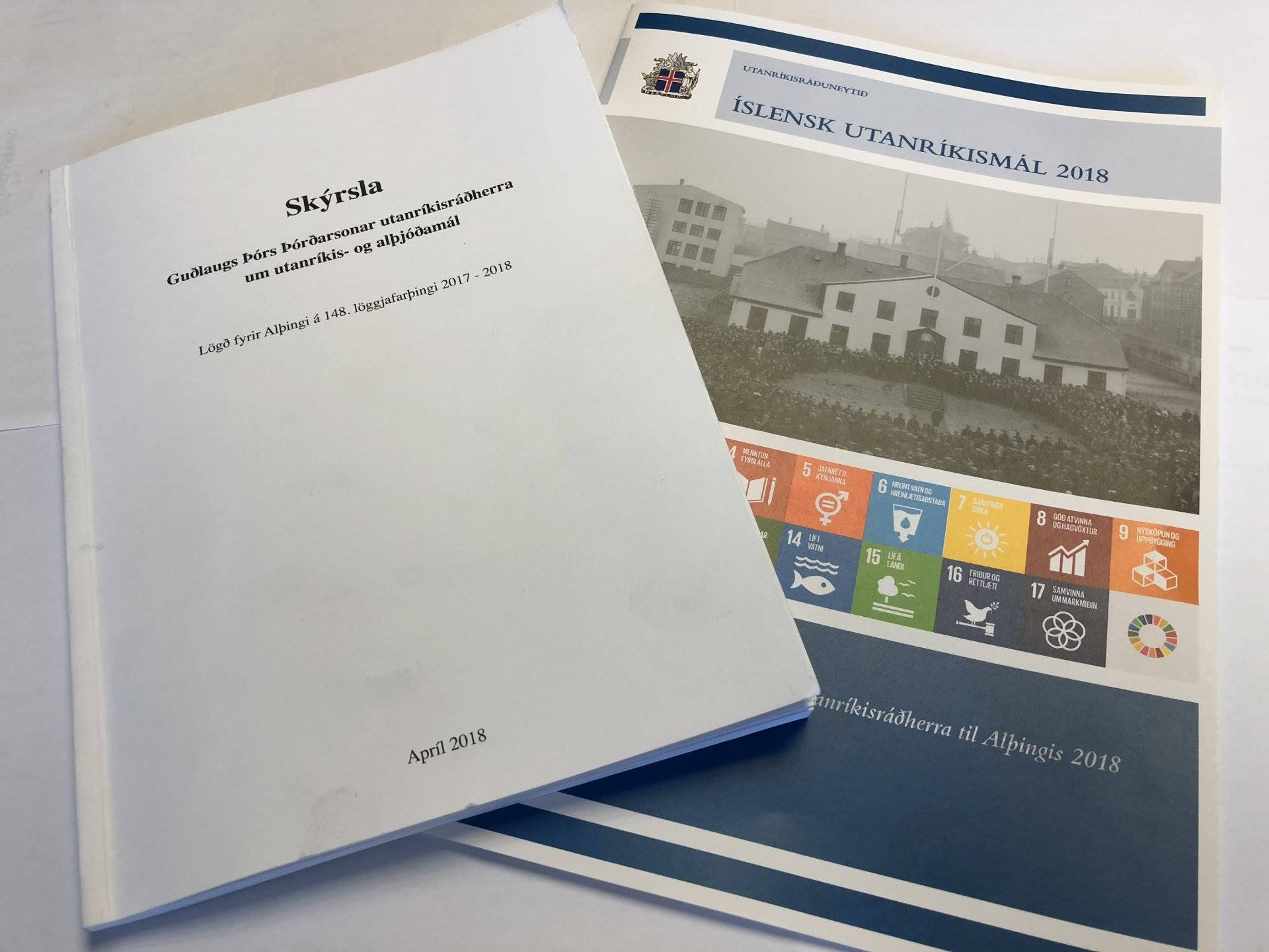Annual report on foreign and international affairs - mynd